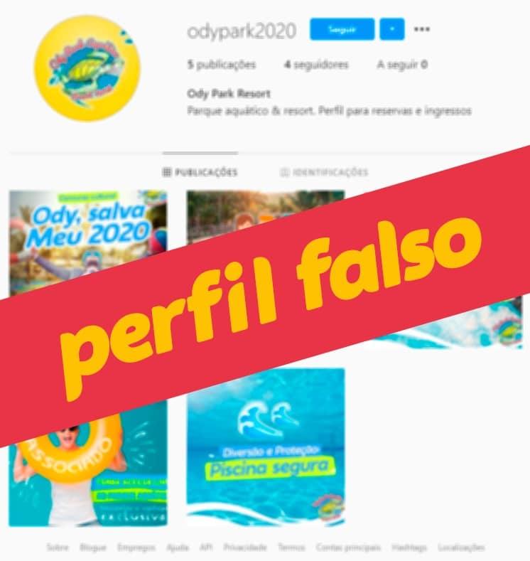 perfil_falso