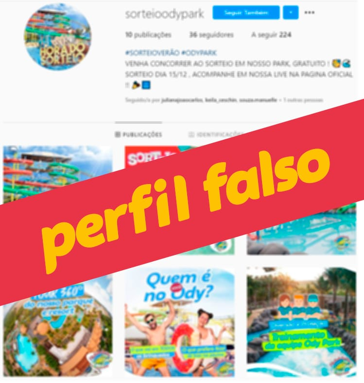 perfil_falso2